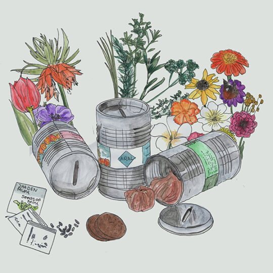 bloembollen in olievaatje spaarpot