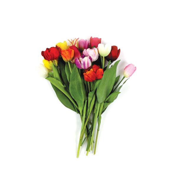 bloembollenpakket bravissimo