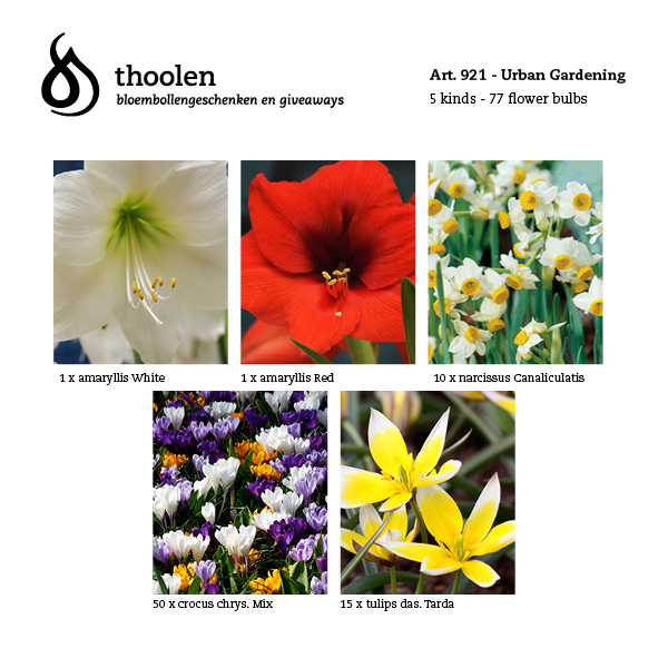 bloembollenpakket Urban Gardening