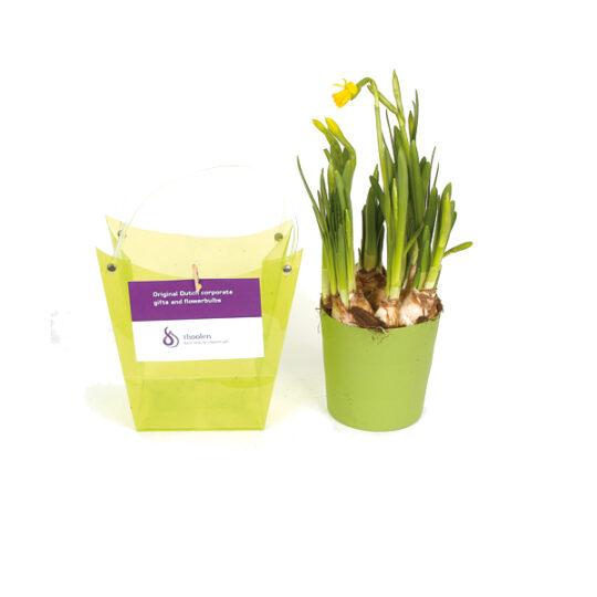 Deze leuke bloeiende geschenken zijn het hele voorjaar leverbaar. De potjes en de tasjes zijn in de volgende kleuren leverbaar: geel, rood, groen en oranje. Aan de tasjes kunnen we een full color kaartje bevestigen. Zo breng je groeien en bloeien wel heel