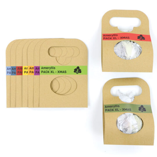 Amaryllis in duurzame draagverpakking