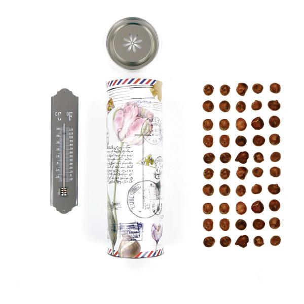 Bloembollenkoker XL met thermometer