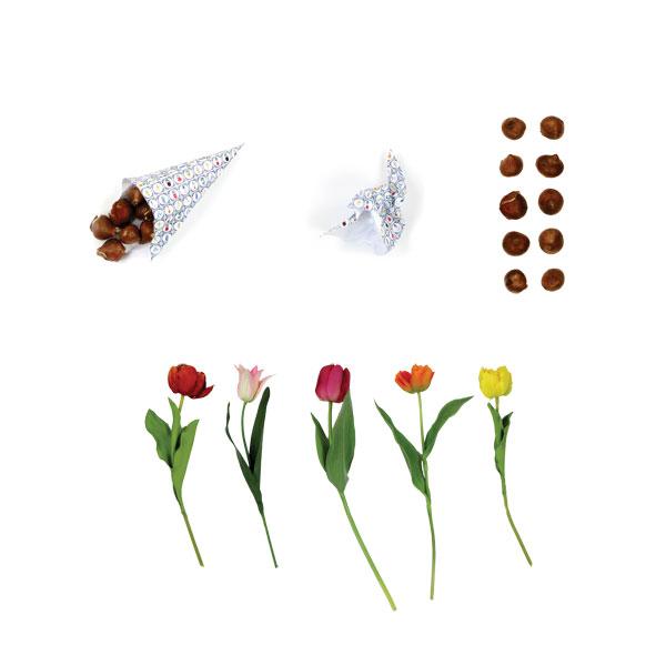 puntzakken bloembollen