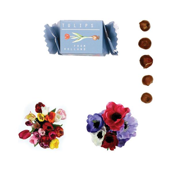 Snoepdoosjes met bloembollen