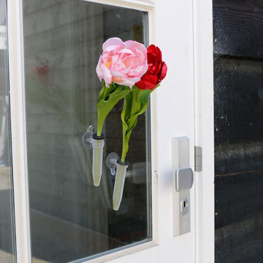 bloeiende tulp in hoes met zuignapje en eigen kaartje