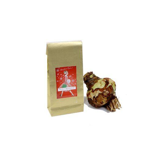 Gouden zakje met amaryllis