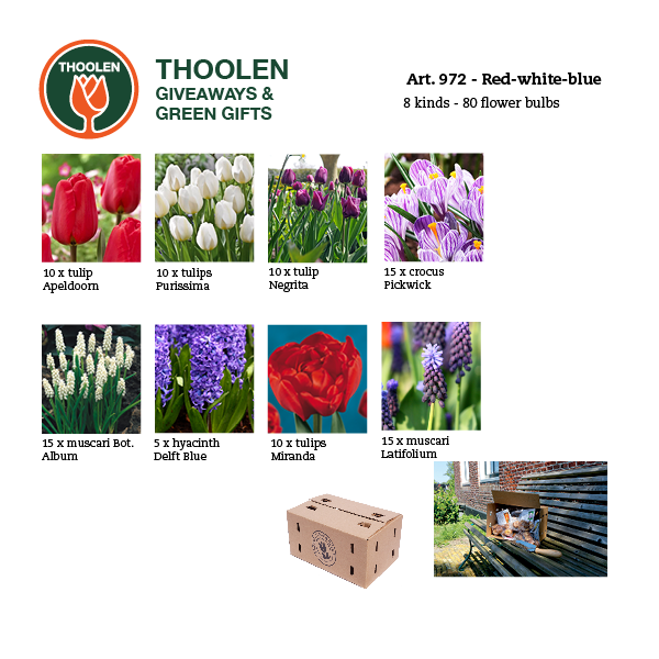 972-redwhiteblue-bloembollenpakket