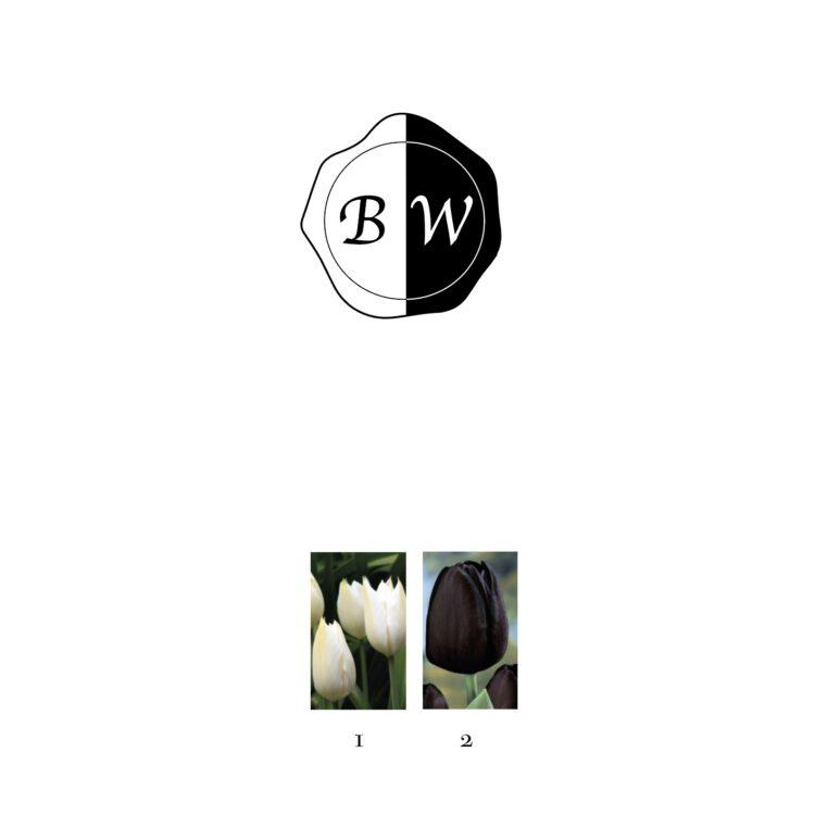 bloembollenpakket Black and White