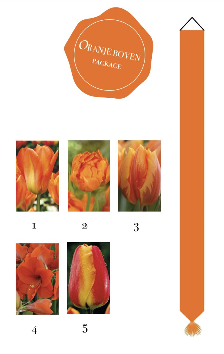 Oranje Boven bloembollenpakket