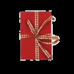 kerstgeschenk amaryllis