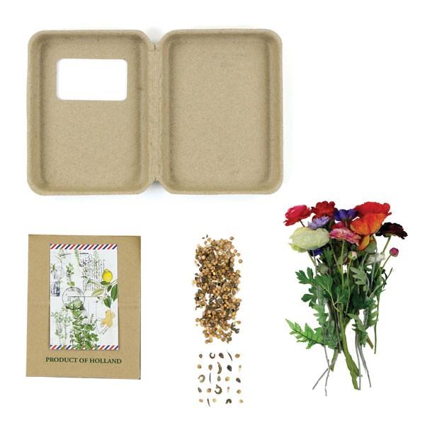 Thoolen bloembollengeschenken en giveaways - kruidendoosjes