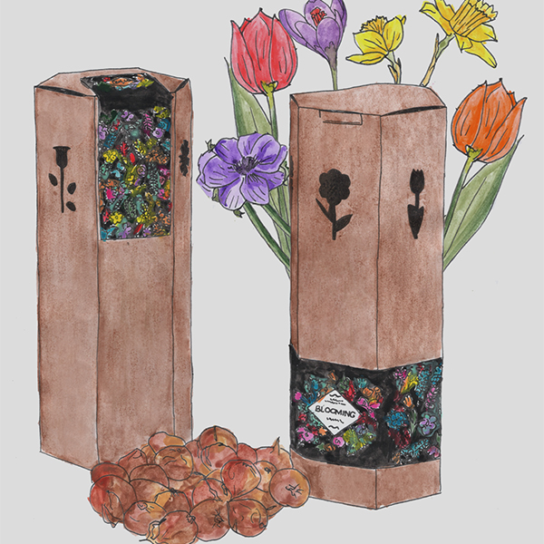 trikant koker vol bloembollen