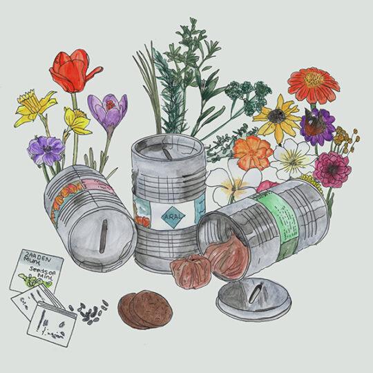 spaarpotje olievaatje met bloembollen