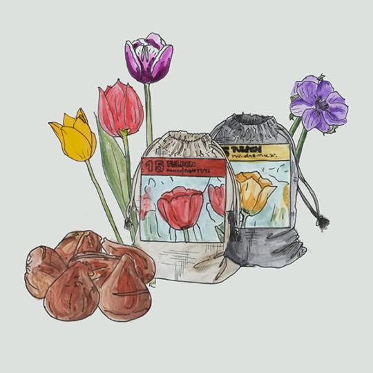 linnen zakjes XS met bloembollen naar keuze
