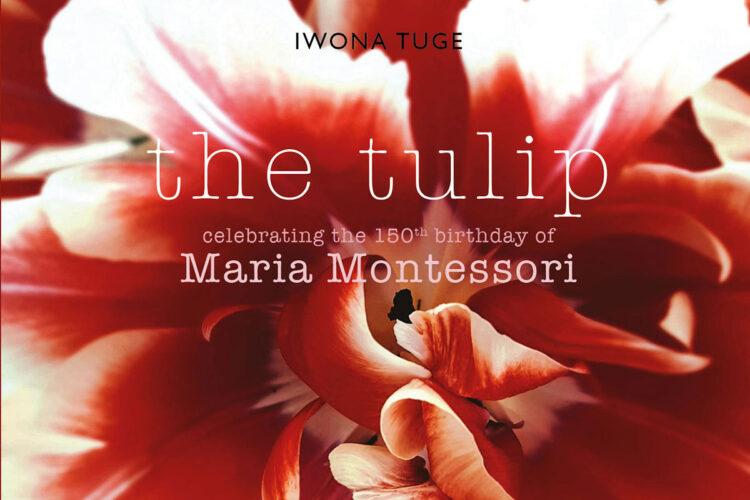 boek maria montessori